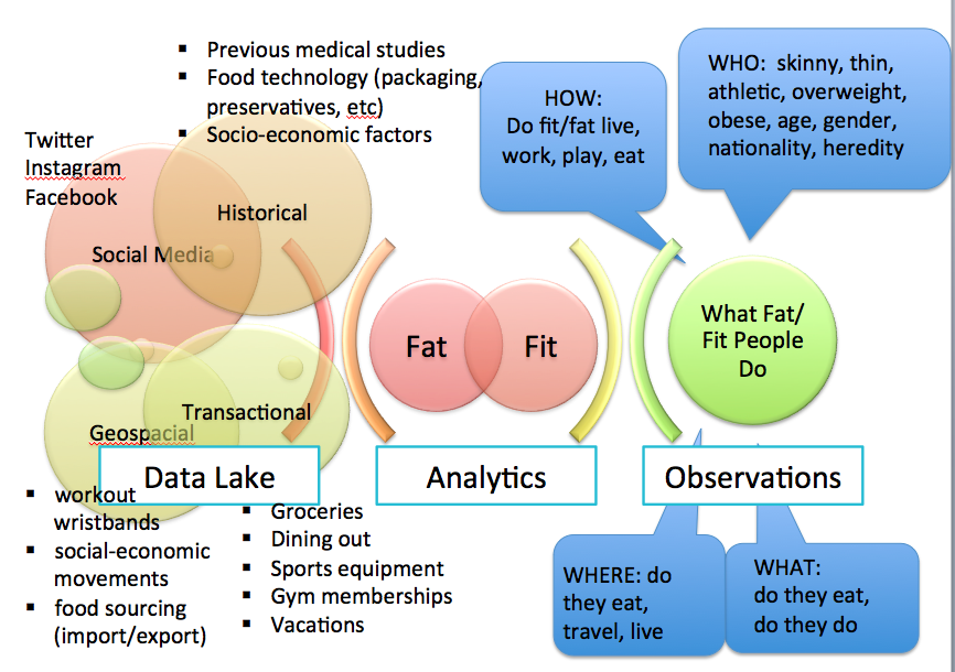 Fit or Fat The Data Lake feeds opportunity to observe the who/what/where/how of Fitness or Obesity