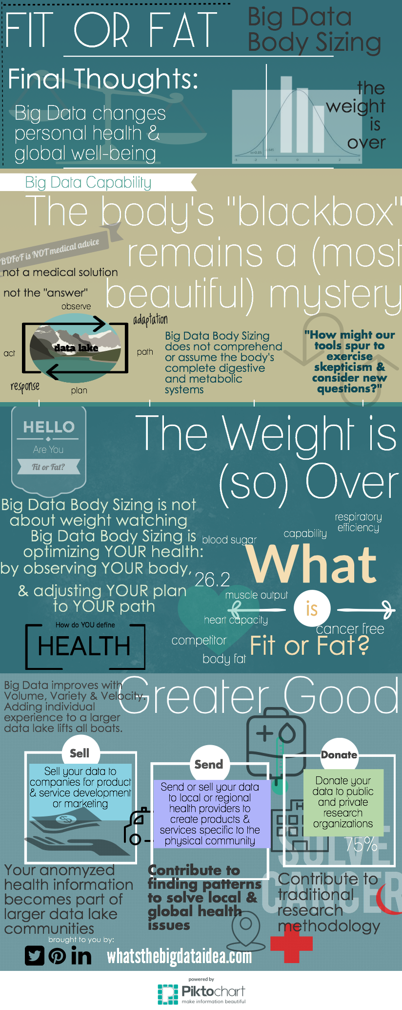 Big Data Fit or Fat Final Thoughts-6